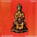 "David Parsons ""Maytreya - the future Buddha"""
